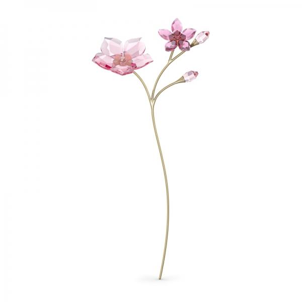 Garden Tales Kwiat Wiśni